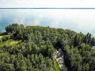 Photo 9: Pigeon Lake AB: Rural Wetaskiwin County Rural Land/Vacant Lot for sale : MLS®# E4195906