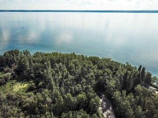 Photo 14: Pigeon Lake AB: Rural Wetaskiwin County Rural Land/Vacant Lot for sale : MLS®# E4195906