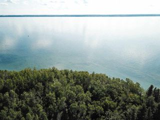 Photo 15: Pigeon Lake AB: Rural Wetaskiwin County Rural Land/Vacant Lot for sale : MLS®# E4195906
