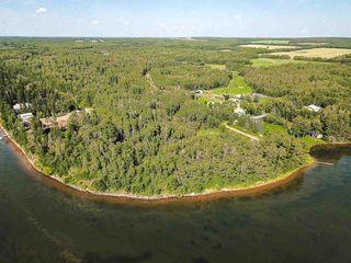 Photo 23: Pigeon Lake AB: Rural Wetaskiwin County Rural Land/Vacant Lot for sale : MLS®# E4195906