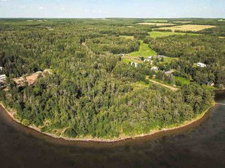 Photo 25: Pigeon Lake AB: Rural Wetaskiwin County Rural Land/Vacant Lot for sale : MLS®# E4195906