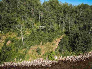 Photo 31: Pigeon Lake AB: Rural Wetaskiwin County Rural Land/Vacant Lot for sale : MLS®# E4195906