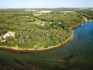 Photo 20: Pigeon Lake AB: Rural Wetaskiwin County Rural Land/Vacant Lot for sale : MLS®# E4195906