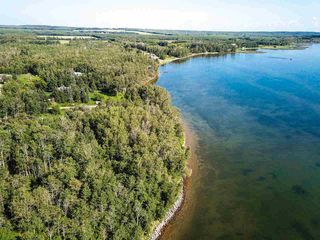 Photo 19: Pigeon Lake AB: Rural Wetaskiwin County Rural Land/Vacant Lot for sale : MLS®# E4195906