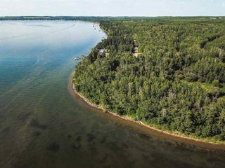 Photo 33: Pigeon Lake AB: Rural Wetaskiwin County Rural Land/Vacant Lot for sale : MLS®# E4195906