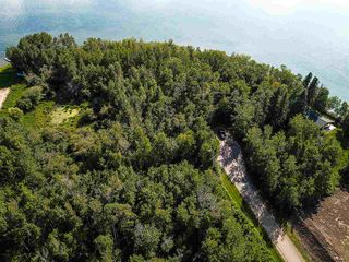 Photo 12: Pigeon Lake AB: Rural Wetaskiwin County Rural Land/Vacant Lot for sale : MLS®# E4195906