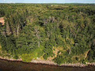 Photo 28: Pigeon Lake AB: Rural Wetaskiwin County Rural Land/Vacant Lot for sale : MLS®# E4195906