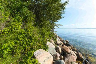 Photo 43: Pigeon Lake AB: Rural Wetaskiwin County Rural Land/Vacant Lot for sale : MLS®# E4195906