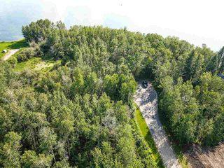 Photo 10: Pigeon Lake AB: Rural Wetaskiwin County Rural Land/Vacant Lot for sale : MLS®# E4195906