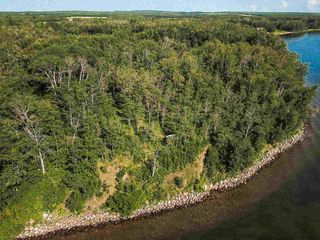 Photo 29: Pigeon Lake AB: Rural Wetaskiwin County Rural Land/Vacant Lot for sale : MLS®# E4195906