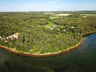 Photo 21: Pigeon Lake AB: Rural Wetaskiwin County Rural Land/Vacant Lot for sale : MLS®# E4195906
