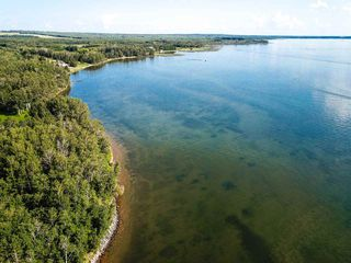 Photo 18: Pigeon Lake AB: Rural Wetaskiwin County Rural Land/Vacant Lot for sale : MLS®# E4195906
