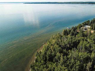 Photo 37: Pigeon Lake AB: Rural Wetaskiwin County Rural Land/Vacant Lot for sale : MLS®# E4195906