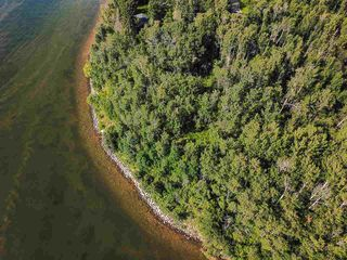 Photo 36: Pigeon Lake AB: Rural Wetaskiwin County Rural Land/Vacant Lot for sale : MLS®# E4195906
