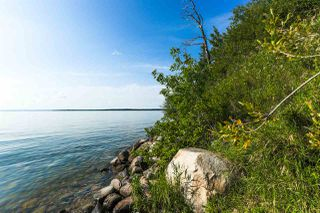 Photo 44: Pigeon Lake AB: Rural Wetaskiwin County Rural Land/Vacant Lot for sale : MLS®# E4195906