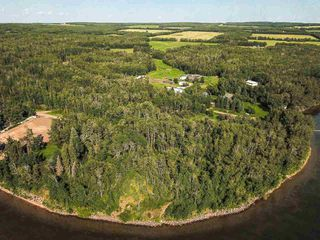 Photo 26: Pigeon Lake AB: Rural Wetaskiwin County Rural Land/Vacant Lot for sale : MLS®# E4195906