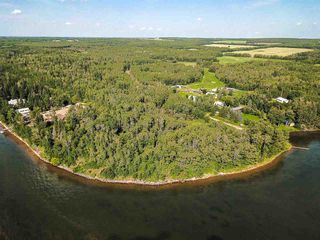 Photo 22: Pigeon Lake AB: Rural Wetaskiwin County Rural Land/Vacant Lot for sale : MLS®# E4195906