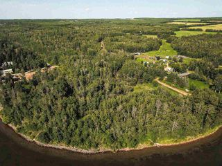 Photo 35: Pigeon Lake AB: Rural Wetaskiwin County Rural Land/Vacant Lot for sale : MLS®# E4195906