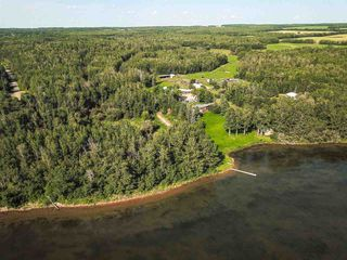 Photo 34: Pigeon Lake AB: Rural Wetaskiwin County Rural Land/Vacant Lot for sale : MLS®# E4195906