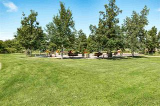 Photo 31: 403 121 FESTIVAL Way: Sherwood Park Condo for sale : MLS®# E4218200