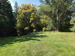Photo 2: 9331 148 Street in Edmonton: Zone 10 Vacant Lot for sale : MLS®# E4170043