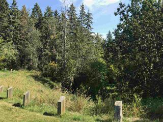 Photo 13: 9331 148 Street in Edmonton: Zone 10 Vacant Lot for sale : MLS®# E4170043