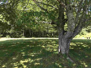 Photo 23: 9292 Highway 7 in Stillwater: 303-Guysborough County Residential for sale (Highland Region)  : MLS®# 201920033