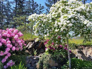 Photo 30: 554 Selwyn Oaks Pl in VICTORIA: La Mill Hill House for sale (Langford)  : MLS®# 832289