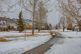 Photo 38: 66 CITADEL CREST Circle NW in Calgary: Citadel Detached for sale : MLS®# C4293389