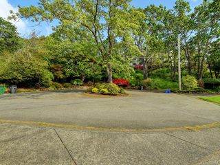 Photo 22: 3936 Oakdale Pl in Saanich: SE Mt Doug Single Family Detached for sale (Saanich East)  : MLS®# 839886