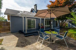 Photo 9: 11748 193B STREET in Pitt Meadows: South Meadows House for sale : MLS®# R2481938