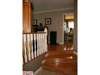 Photo 8: 3359 271B Street in Langley: Aldergrove Langley House for sale : MLS®# F1011403