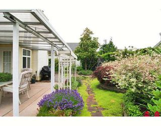"""Photo 10: 24 8555 209TH Street in Langley: Walnut Grove Townhouse for sale in """"AUTUMNWOOD"""" : MLS®# F2914453"""