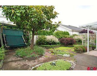 """Photo 9: 24 8555 209TH Street in Langley: Walnut Grove Townhouse for sale in """"AUTUMNWOOD"""" : MLS®# F2914453"""