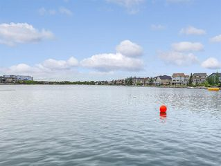 Photo 49: 113 AUBURN SOUND Manor SE in Calgary: Auburn Bay Detached for sale : MLS®# C4259383