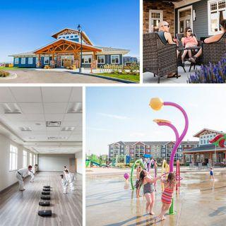 Photo 27: 3059 Carpenter Landing in Edmonton: Zone 55 House for sale : MLS®# E4168846