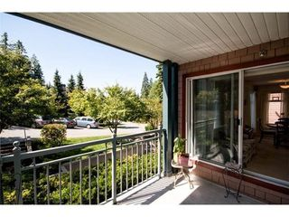 Photo 22: 201 1144 STRATHAVEN Drive in North Vancouver: Home for sale : MLS®# V1085192