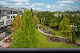 """Photo 20: 415 8880 202 Street in Langley: Walnut Grove Condo for sale in """"The Residences at Village Square"""" : MLS®# R2452975"""