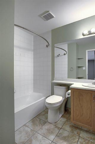 Photo 23: 216 17459 98A Avenue in Edmonton: Zone 20 Condo for sale : MLS®# E4210210