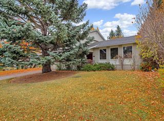 Photo 44: 1311 Kerwood Crescent SW in Calgary: Kelvin Grove Detached for sale : MLS®# A1041967