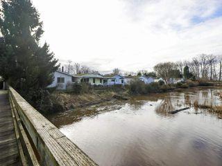"Photo 16: 5247 REGATTA Way in Delta: Neilsen Grove House for sale in ""SOUTH POINTE"" (Ladner)  : MLS®# R2432350"