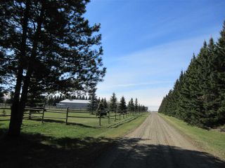 Photo 33: 24315 TWP RD 552: Rural Sturgeon County House for sale : MLS®# E4187746