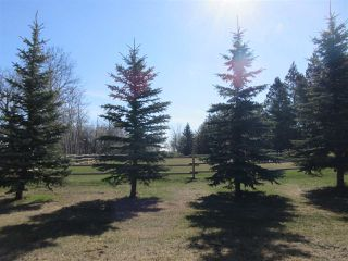 Photo 32: 24315 TWP RD 552: Rural Sturgeon County House for sale : MLS®# E4187746