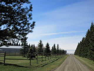 Photo 34: 24315 TWP RD 552: Rural Sturgeon County House for sale : MLS®# E4187746