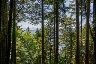 Photo 2: 350 MOUNTAIN Drive: Lions Bay Land for sale (West Vancouver)  : MLS®# R2459456