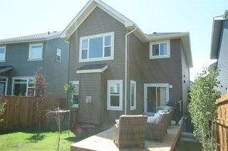 Photo 36: 20 Sunrise View: Cochrane Detached for sale : MLS®# A1019630