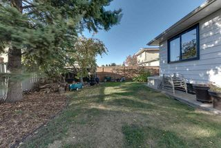 Photo 45: 10447 32 Avenue in Edmonton: Zone 16 House for sale : MLS®# E4217168
