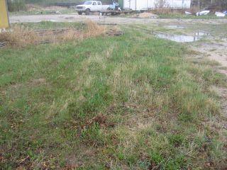 Photo 2: 3411 pembina Highway in WINNIPEG: Fort Garry / Whyte Ridge / St Norbert Industrial / Commercial / Investment for sale (South Winnipeg)  : MLS®# 1010059