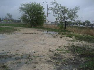 Photo 7: 3411 pembina Highway in WINNIPEG: Fort Garry / Whyte Ridge / St Norbert Industrial / Commercial / Investment for sale (South Winnipeg)  : MLS®# 1010059