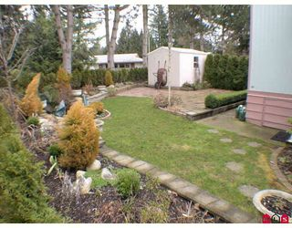 """Photo 10: 115 3665 244 Street in LANGLEY: Otter District Manufactured Home for sale in """"LANGLEY GROVE ESTATE"""" (Langley)  : MLS®# F2904207"""
